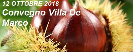 Agricoltura biosostenibile: convegno a Montella sulla filiera della castagna