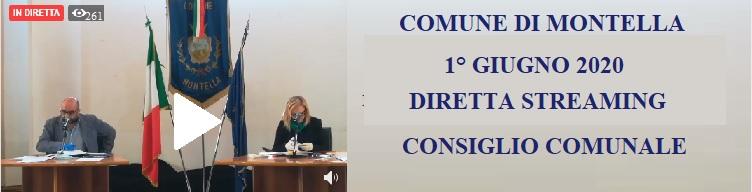 Diretta streaming del consiglio Comunale del 1° giugno 2020 ore 9.00
