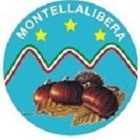 Montella Libera